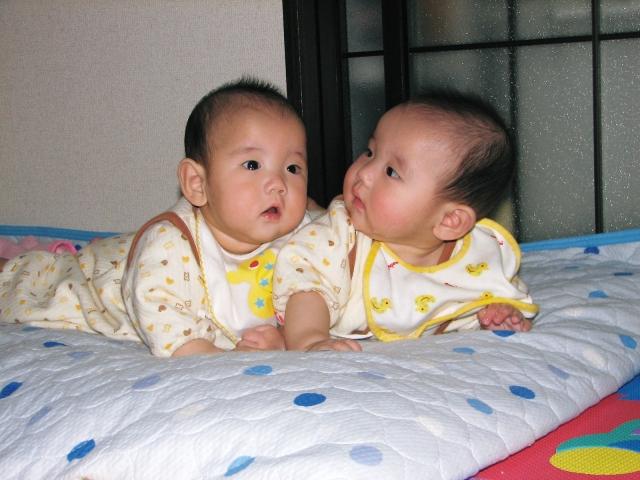 双子 妊娠 したい 双子を妊娠したいのですが双子を妊娠、出産された方で教えていただき...